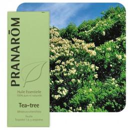 Huile essentielle de Tea Tree - 10 ml
