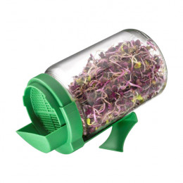 Bocal pour graines à germer
